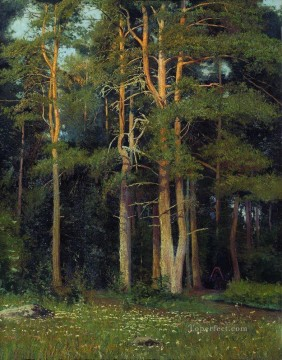 pine forest in ligovo 1895 classical landscape Ivan Ivanovich Oil Paintings