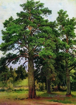 pine without the sun mary howe 1890 classical landscape Ivan Ivanovich Oil Paintings