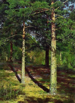 the sun lit pines 1886 classical landscape Ivan Ivanovich Oil Paintings
