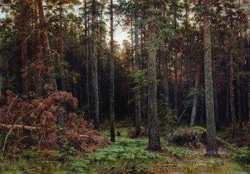 pine forest 1885 1 classical landscape Ivan Ivanovich Oil Paintings