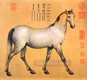 horse - Afghan Four Steeds features a horse named Chaoni er Lang shining Giuseppe Castiglione old China ink
