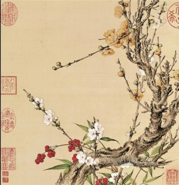 Lang shining plum blossom old China ink Giuseppe Castiglione Oil Paintings