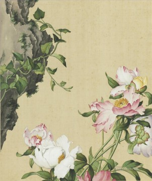 lactiflora Works - Picture of Paeonia lactiflora from Xian e Changchun Album Lang shining Giuseppe Castiglione old China ink