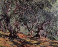 Olive Trees in Bordighera Claude Monet