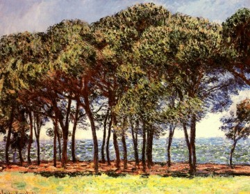 Tree Painting - Pine Trees Cap d Antibes Claude Monet