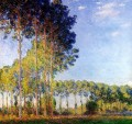 Poplars on the Banks of the River Epte Seen from the Marsh 莫奈
