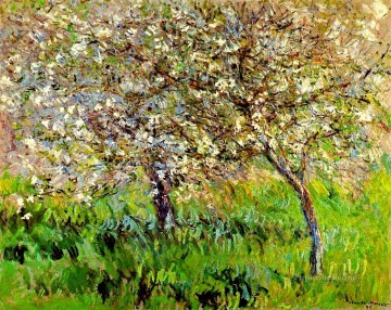 Tree Painting - Apple Trees in Bloom at Giverny Claude Monet