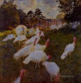 Turkeys Claude Monet