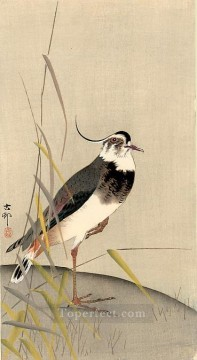 wagtail Ohara Koson Shin hanga Oil Paintings