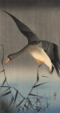 white fronted goose descending over reeds Ohara Koson Shin hanga Oil Paintings