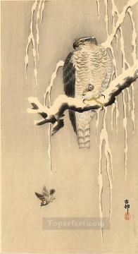 goshawk on snowy branch Ohara Koson Shin hanga Oil Paintings