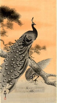 on - peacock and hen Ohara Koson Shin hanga