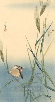 Song Art - songbird on barley stalk Ohara Koson Shin hanga