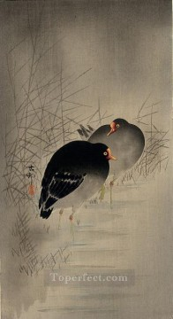 two gallinules Ohara Koson Shin hanga Oil Paintings