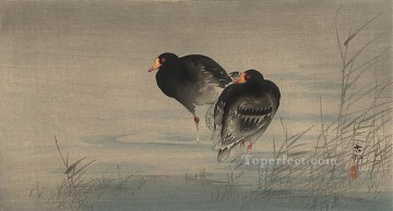 hanga Deco Art - two gallinules in shallow water Ohara Koson Shin hanga