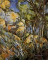 Rocks near the Caves below the Chateau Noir Paul Cezanne