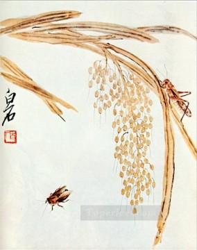 Qi Baishi Painting - Qi Baishi whisk rice and grasshoppers old China ink