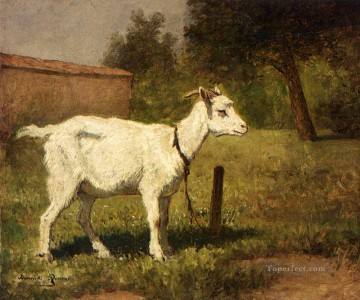 A Goat In A Meadow animal sheep Henriette Ronner Knip Oil Paintings