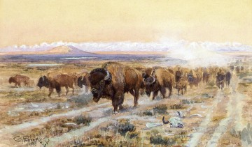 cat Art Painting - The Bison Trail cattles western American Charles Marion Russell