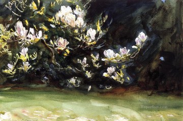Magnolias John Singer Sargent Oil Paintings