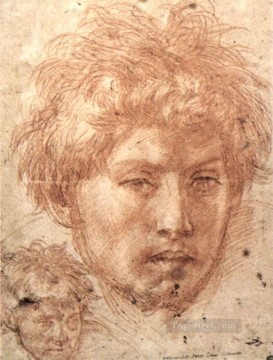 Andrea Canvas - Head Of A Young Man renaissance mannerism Andrea del Sarto