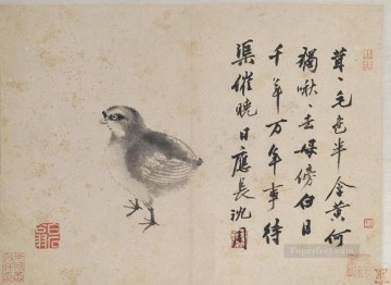 Shen Zhou Painting - quail sketches from life old China ink