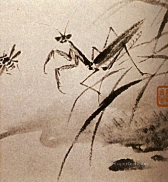 china - Shitao studies of insects mante 1707 old China ink