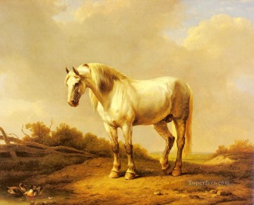 A White Stallion In A Landscape Eugene Verboeckhoven horse Oil Paintings