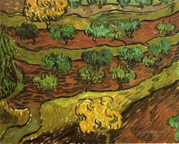 Vincent Van Gogh Painting - Olive Trees against a Slope of a Hill Vincent van Gogh
