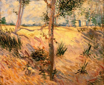 Vincent Van Gogh Painting - Trees in a Field on a Sunny Day Vincent van Gogh