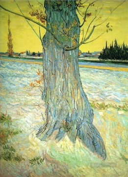 Trunk of an Old Yew Tree Vincent van Gogh Oil Paintings