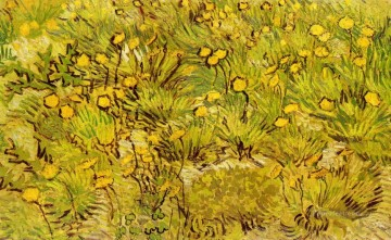 Vincent Van Gogh Painting - A Field of Yellow Flowers Vincent van Gogh