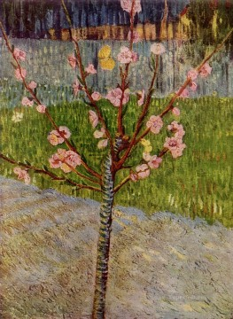 Almond Tree in Blossom Vincent van Gogh Oil Paintings