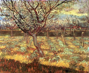 blossom Painting - Apricot Trees in Blossom Vincent van Gogh