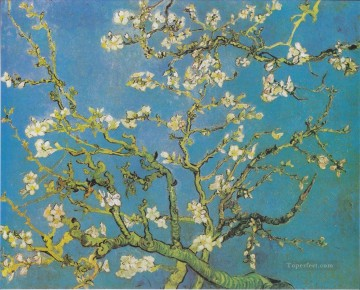 Branches with Almond Blossom 2 Vincent van Gogh Oil Paintings