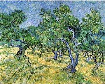 Olive Grove Vincent van Gogh Oil Paintings