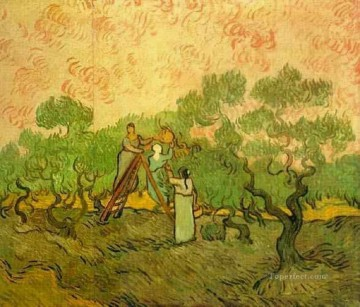 Vincent Van Gogh Painting - Olive Picking Vincent van Gogh