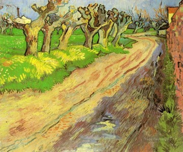 Pollard Willows Vincent van Gogh Oil Paintings