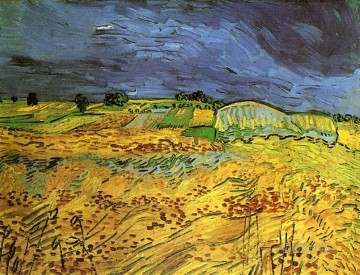 The Fields Vincent van Gogh Oil Paintings