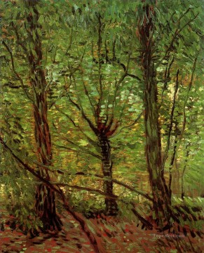 Trees and Undergrowth 2 Vincent van Gogh Oil Paintings