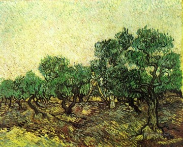 Olive Picking 2 Vincent van Gogh Oil Paintings