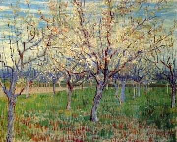 Orchard with Blossoming Apricot Trees Vincent van Gogh Oil Paintings