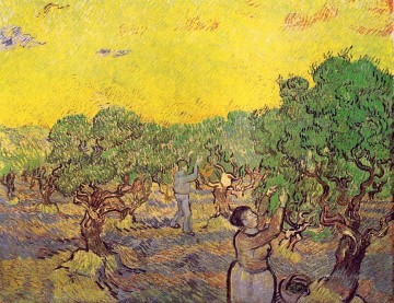 Olive Grove with Picking Figures Vincent van Gogh Oil Paintings