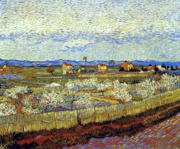 vincent van gogh Painting - Peach Trees in Blossom Vincent van Gogh