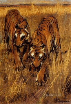 Arthur Wardle Painting - Tigers 2 Arthur Wardle