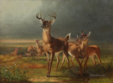 Deer On The Prairie William Holbrook Beard Oil Paintings