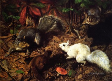 Beard Canvas - Squirrels known as The White Squirrel William Holbrook Beard