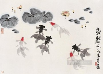 goldfish Painting - Wu zuoren goldfish in waterlilies old China ink