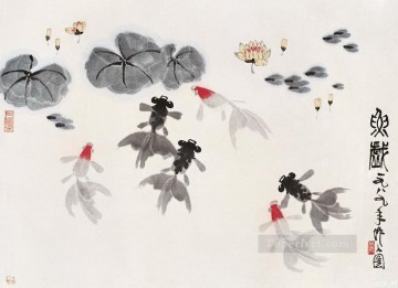 Wu zuoren so many fishes old China ink Oil Paintings