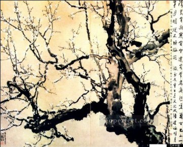Xu Beihong Ju Peon Painting - Xu Beihong white plum blossom old China ink